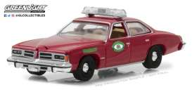 Pontiac  - 1976  - 1:64 - GreenLight - gl42830B | Tom's Modelauto's