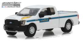 Ford  - F-150 2016 white - 1:64 - GreenLight - 41060F - gl41060F | Tom's Modelauto's