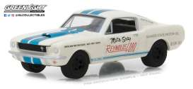 Shelby  - GT-350 *Super Horse* 1965 white/blue - 1:64 - GreenLight - 29949 - gl29949 | Tom's Modelauto's