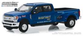 Ford  - F-350 2018  - 1:64 - GreenLight - 46020E - gl46020E | Tom's Modelauto's