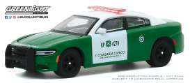 Dodge  - Charger 2018 green - 1:64 - GreenLight - 30162 - gl30162 | Toms Modelautos