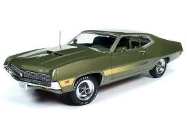 Ford  - Torino 1970 ivy poly - 1:18 - Auto World - AMM1211 - AMM1211 | Toms Modelautos