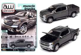 Chevrolet  - Silverado 2019 grey/silver - 1:64 - Auto World - SP053A - AWSP053A | Toms Modelautos
