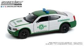 Dodge  - Charger 2006 white/green - 1:43 - GreenLight - 86605 - gl86605 | Toms Modelautos
