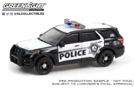 Ford  - Interceptor 2020  - 1:64 - GreenLight - 30256 - gl30256 | Toms Modelautos