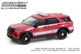 Ford  - Interceptor 2020  - 1:64 - GreenLight - 30257 - gl30257 | Toms Modelautos