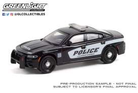 Dodge  - Charger 2021 black/white - 1:64 - GreenLight - 30314 - gl30314 | Toms Modelautos